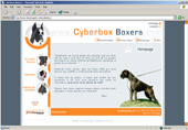 Cyberbox Boxers